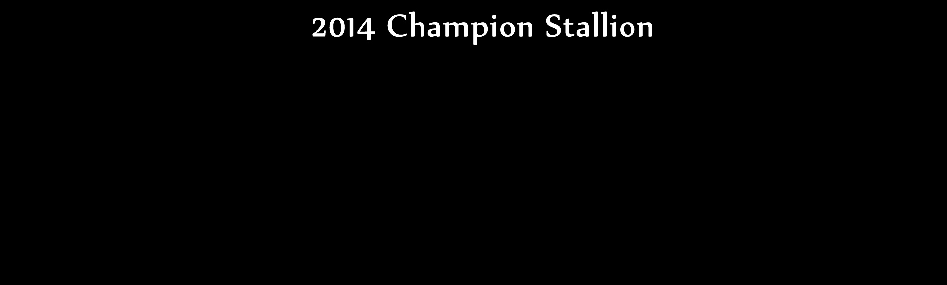 Triple Crown Champion Stallion